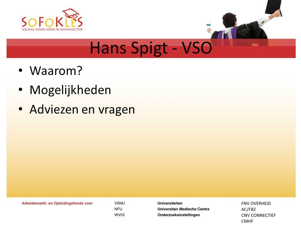 Hans Spigt - VSO Waarom Mogelijkheden Adviezen en vragen