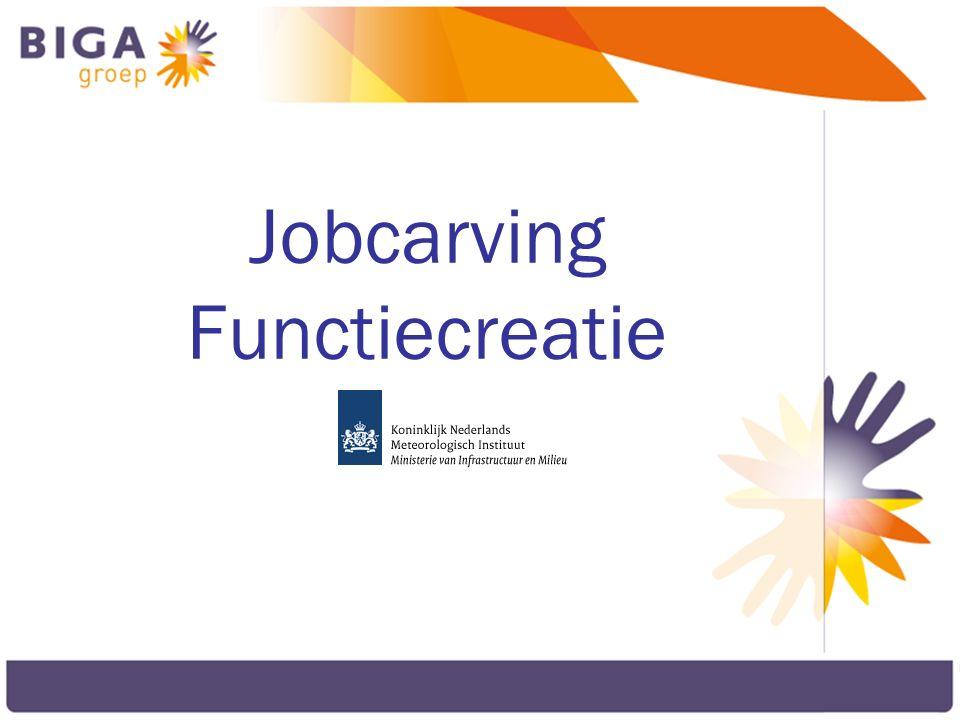 Jobcarving Functiecreatie