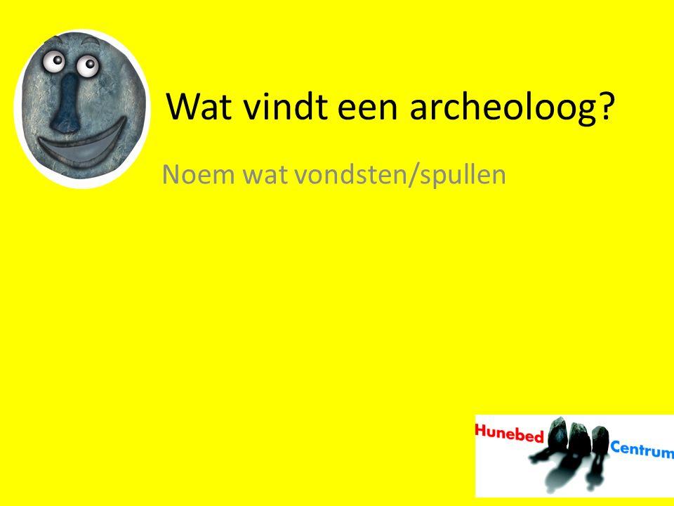 Wat vindt een archeoloog
