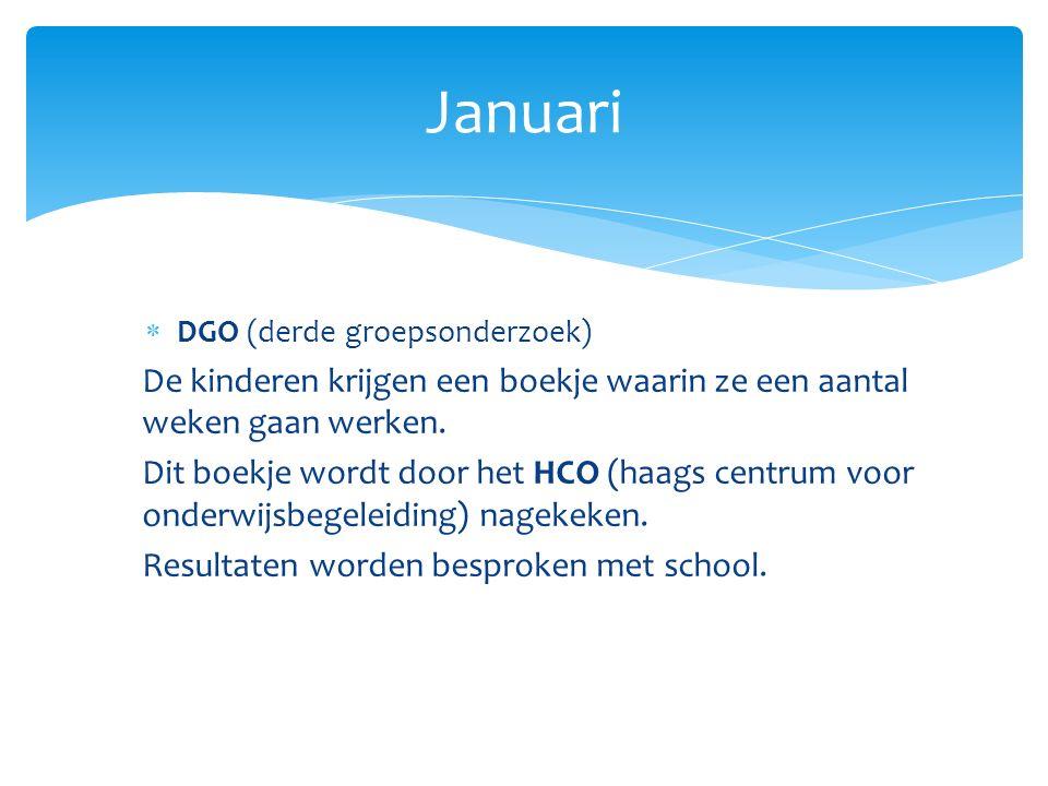Januari DGO (derde groepsonderzoek) De kinderen krijgen een boekje waarin ze een aantal weken gaan werken.