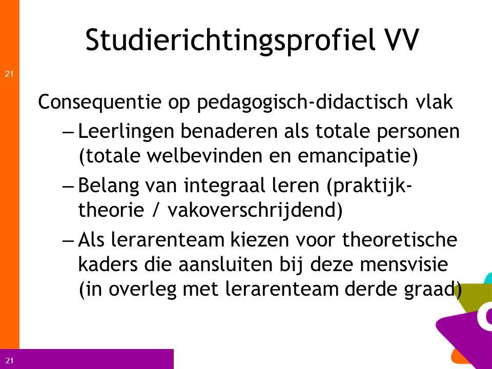 Studierichtingsprofiel VV