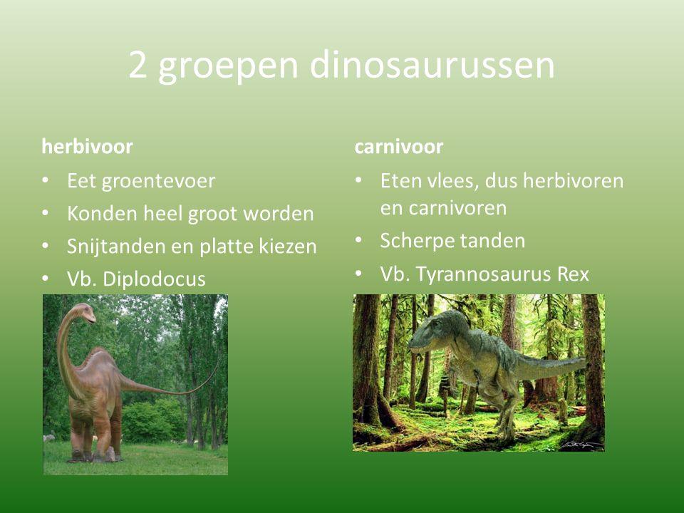 2 groepen dinosaurussen
