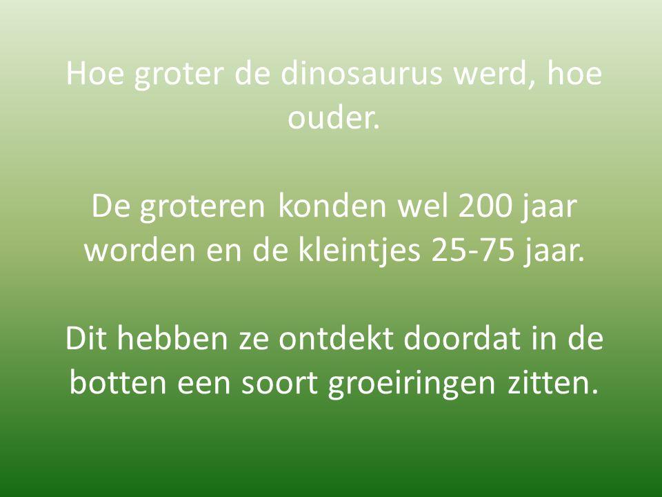 Hoe groter de dinosaurus werd, hoe ouder