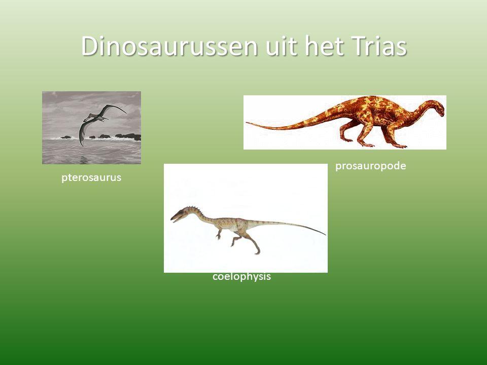 Dinosaurussen uit het Trias