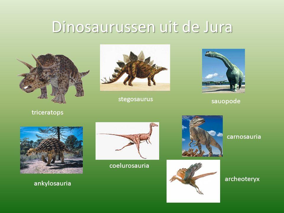 Dinosaurussen uit de Jura