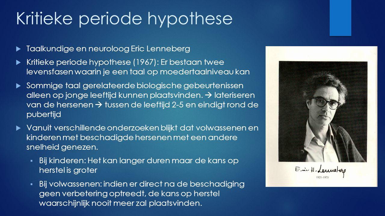 Kritieke periode hypothese