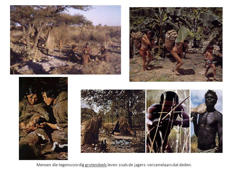 Mensen die tegenwoordig grotendeels leven zoals de jagers- verzamelaars dat deden.