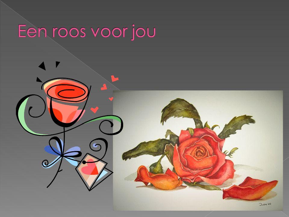 Een roos voor jou http://media.photobucket.com/image/roos/aquarelkunst/roos1.jpg