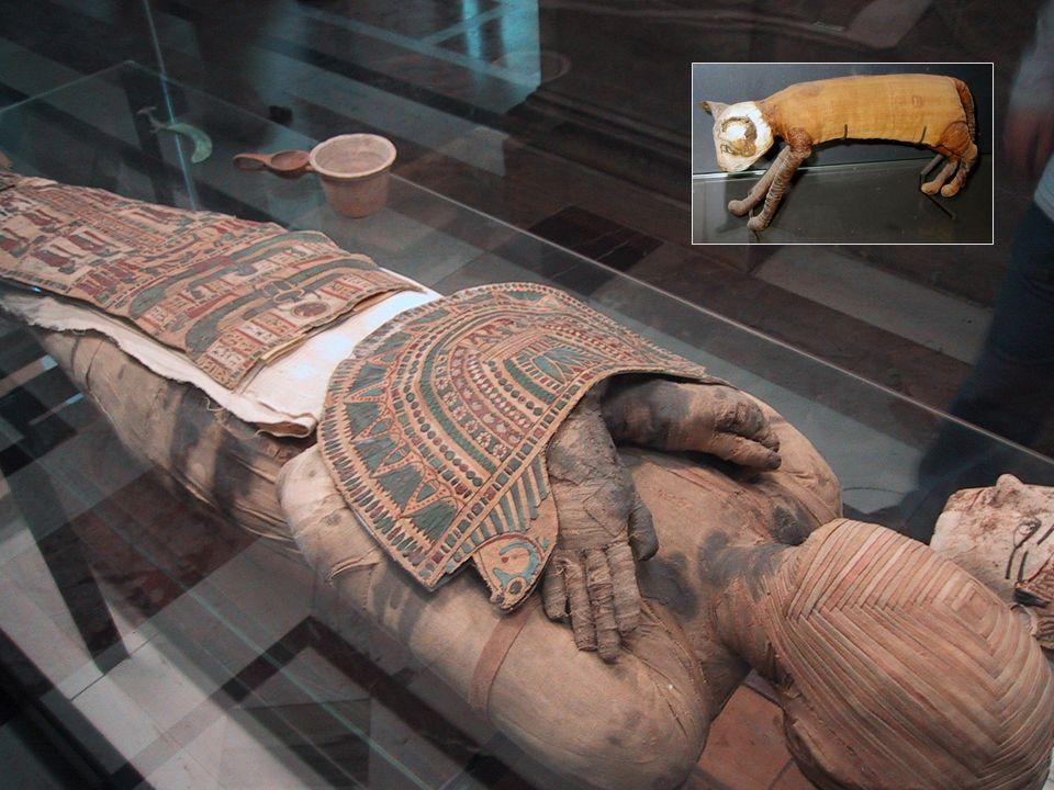 Een mummie in het Louvre in Parijs. Mummie van een kat, Egypte.