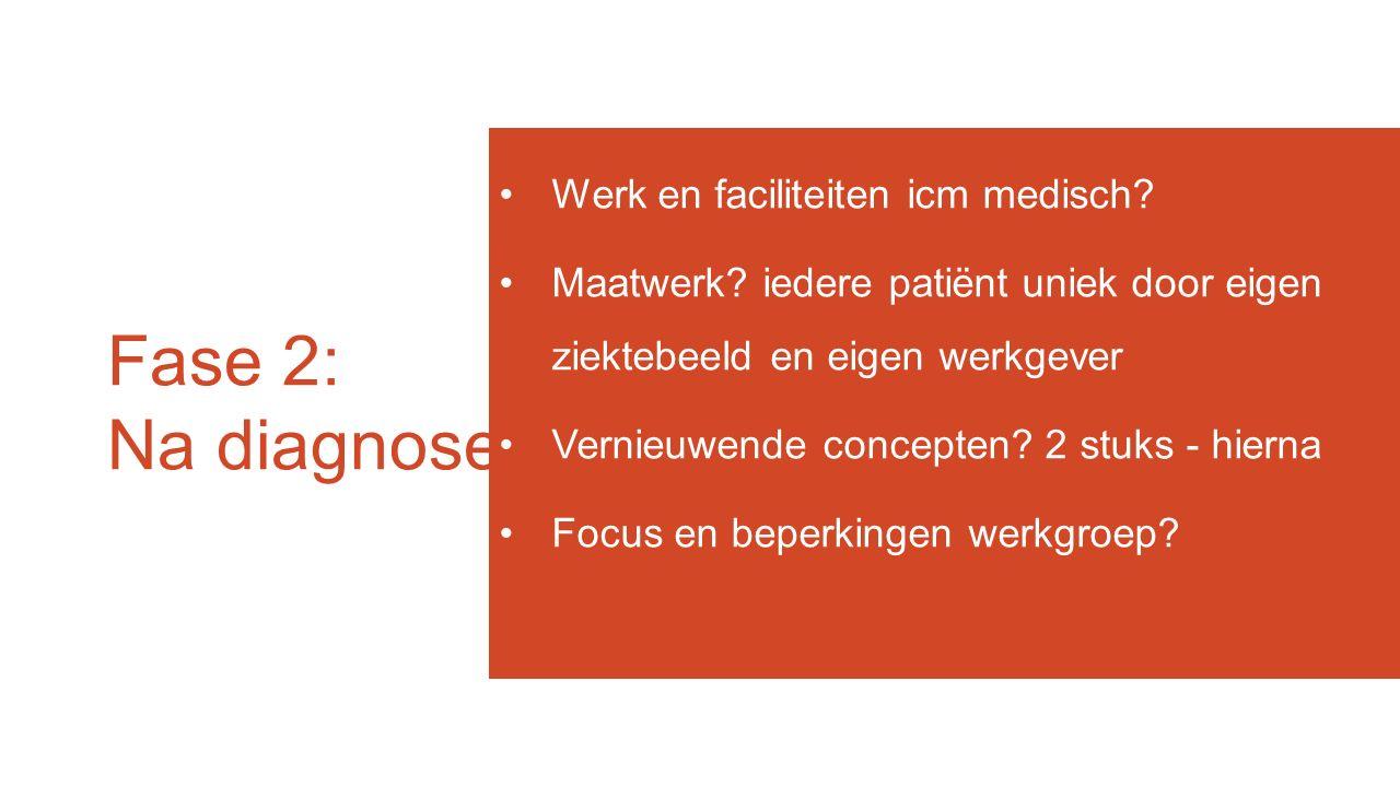 Fase 2: Na diagnose Werk en faciliteiten icm medisch