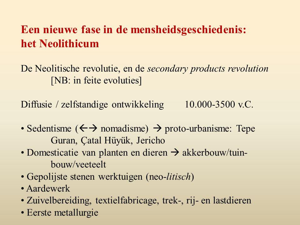Een nieuwe fase in de mensheidsgeschiedenis: het Neolithicum
