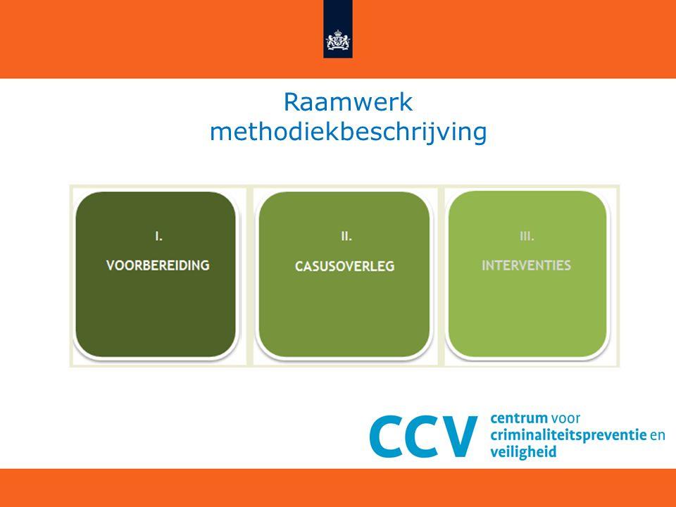 Raamwerk methodiekbeschrijving