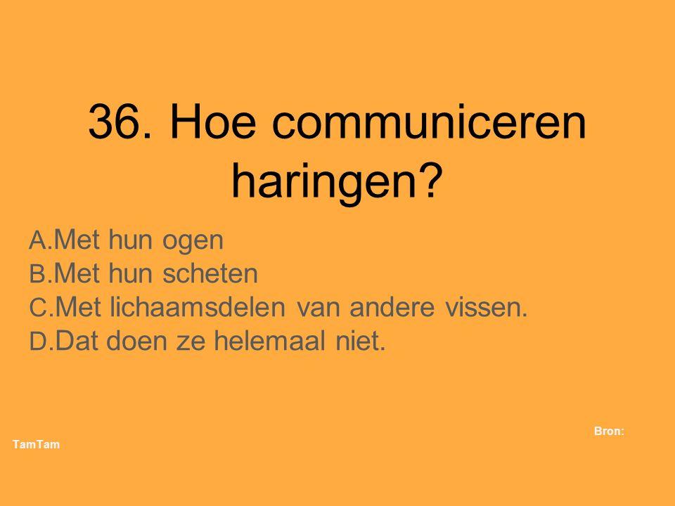 36. Hoe communiceren haringen