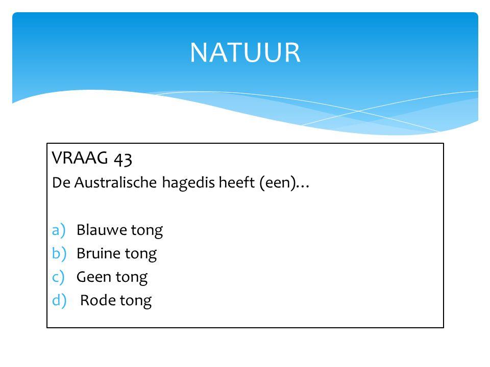 NATUUR VRAAG 43 De Australische hagedis heeft (een)… Blauwe tong