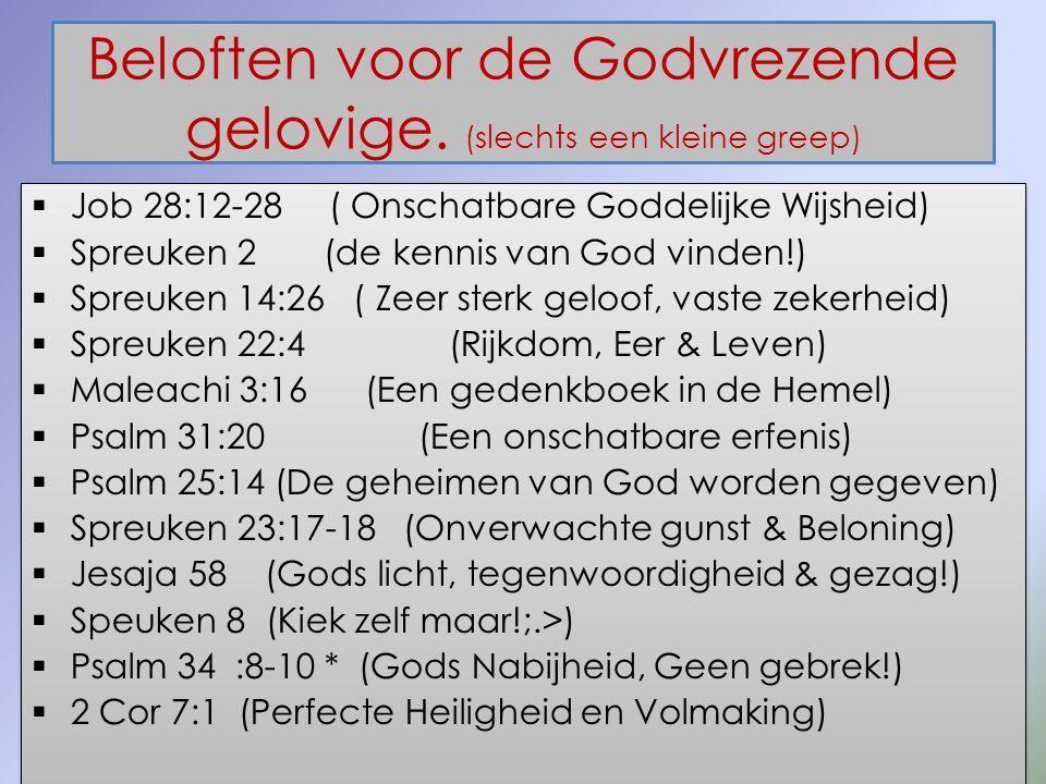 Beloften voor de Godvrezende gelovige. (slechts een kleine greep)