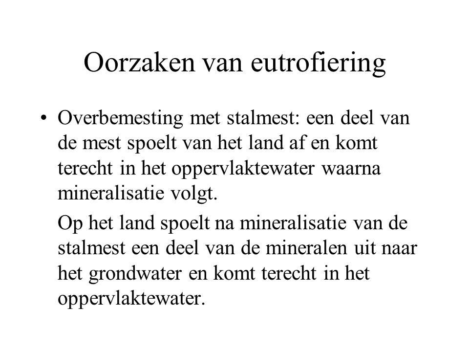 Oorzaken van eutrofiering