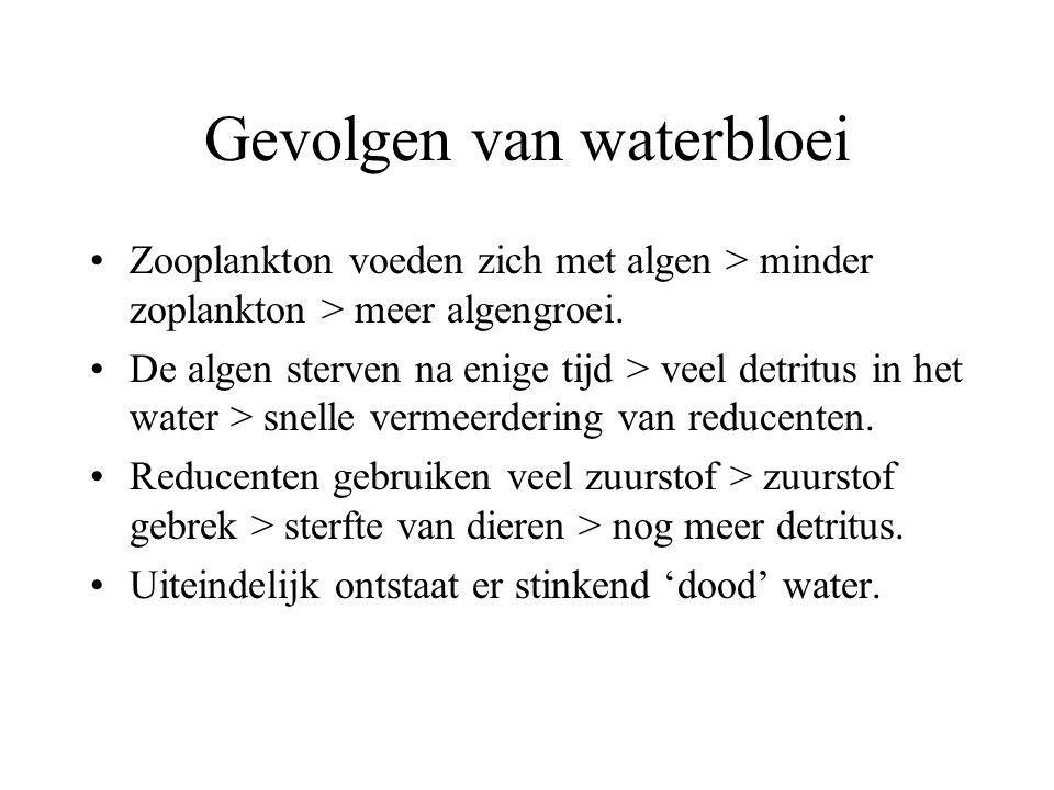 Gevolgen van waterbloei