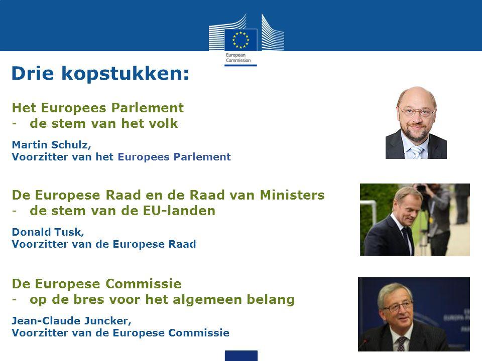 Drie kopstukken: Het Europees Parlement de stem van het volk