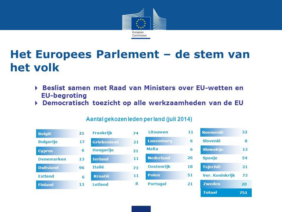 Het Europees Parlement – de stem van het volk