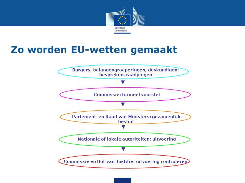Zo worden EU-wetten gemaakt