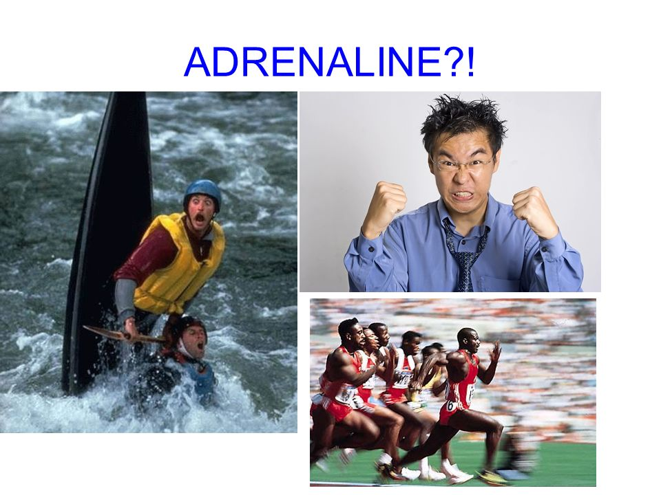 ADRENALINE !