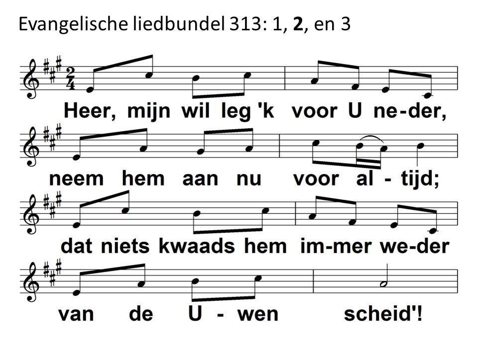 Evangelische liedbundel 313: 1, 2, en 3