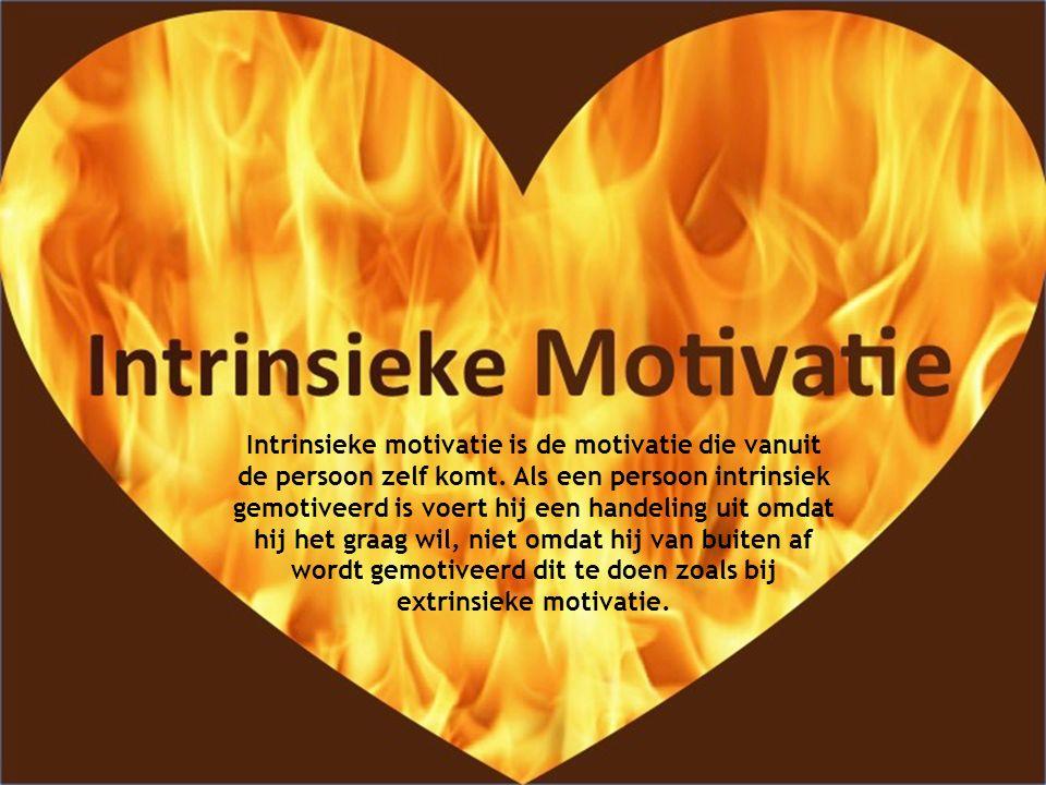 Intrinsieke motivatie is de motivatie die vanuit de persoon zelf komt