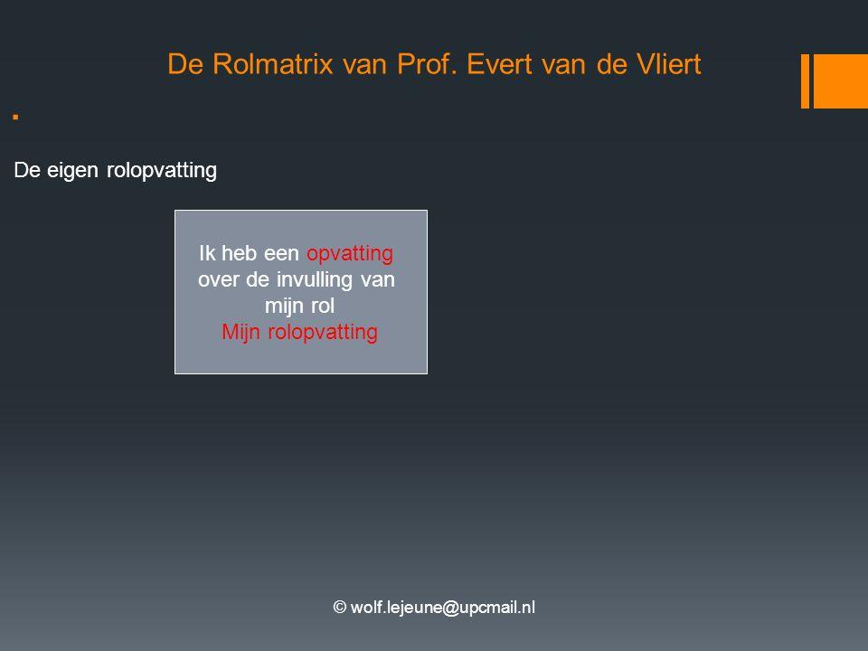 . De Rolmatrix van Prof. Evert van de Vliert De eigen rolopvatting