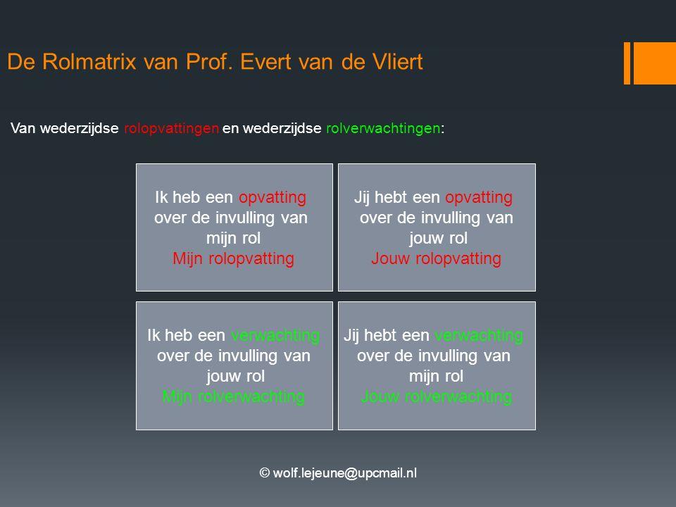 De Rolmatrix van Prof. Evert van de Vliert