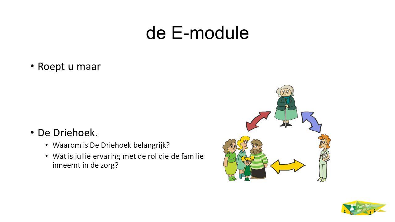 de E-module Roept u maar De Driehoek.