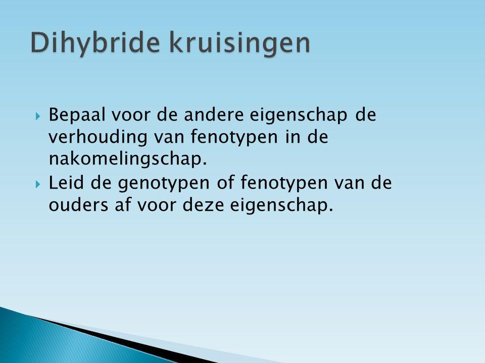 Dihybride kruisingen Bepaal voor de andere eigenschap de verhouding van fenotypen in de nakomelingschap.