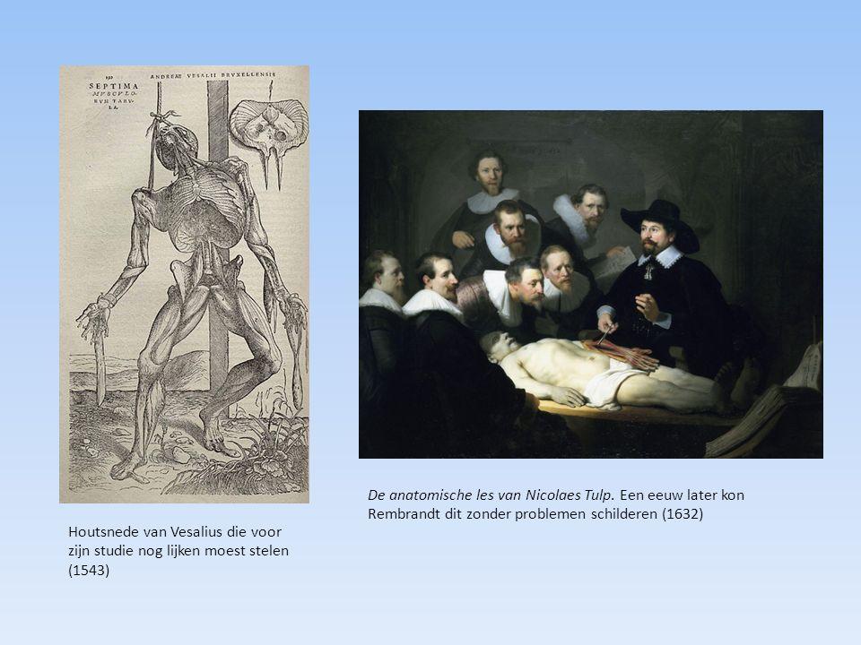 De anatomische les van Nicolaes Tulp