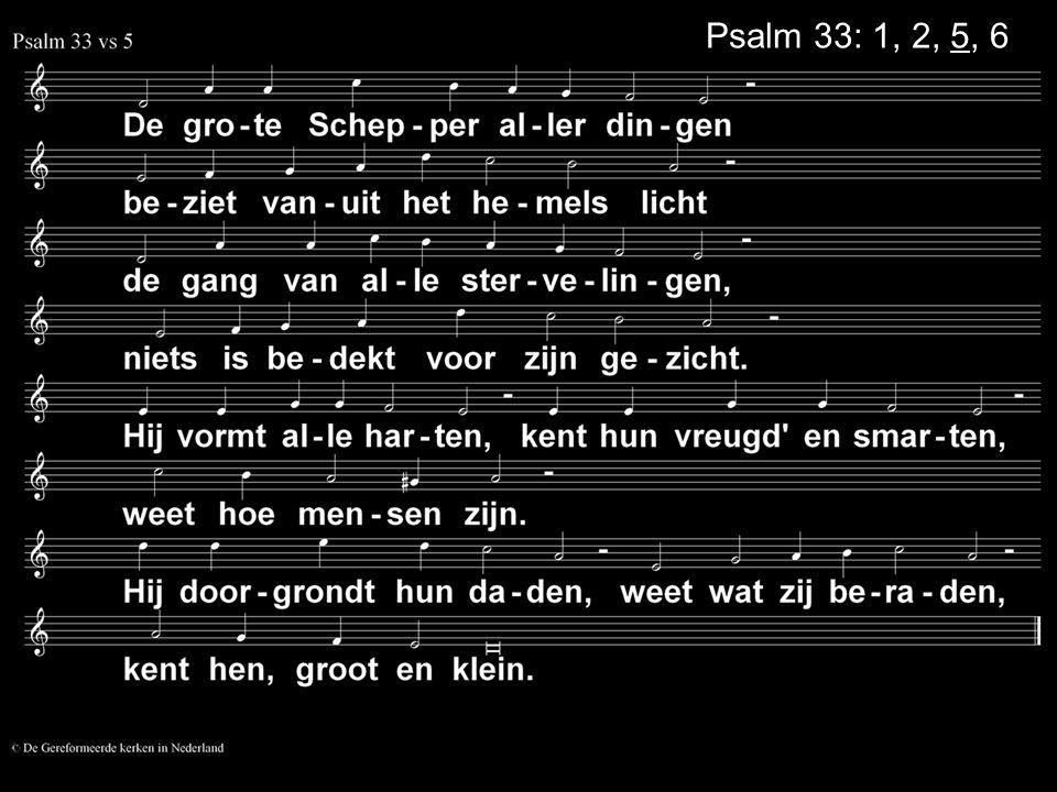 Psalm 33: 1, 2, 5, 6