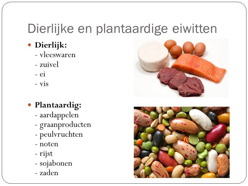 lijst eiwitten