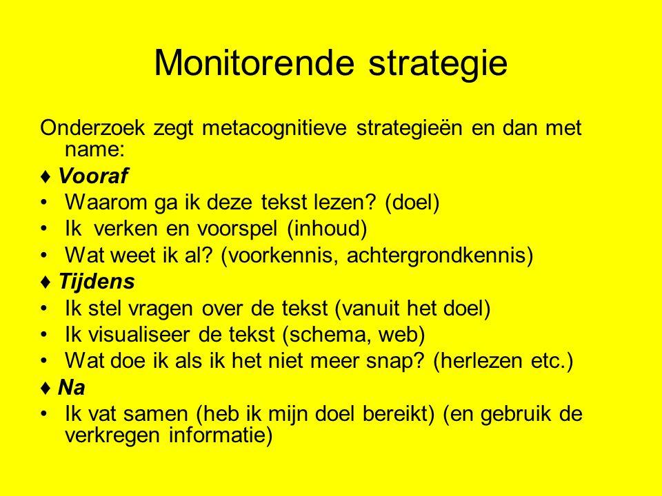 Monitorende strategie