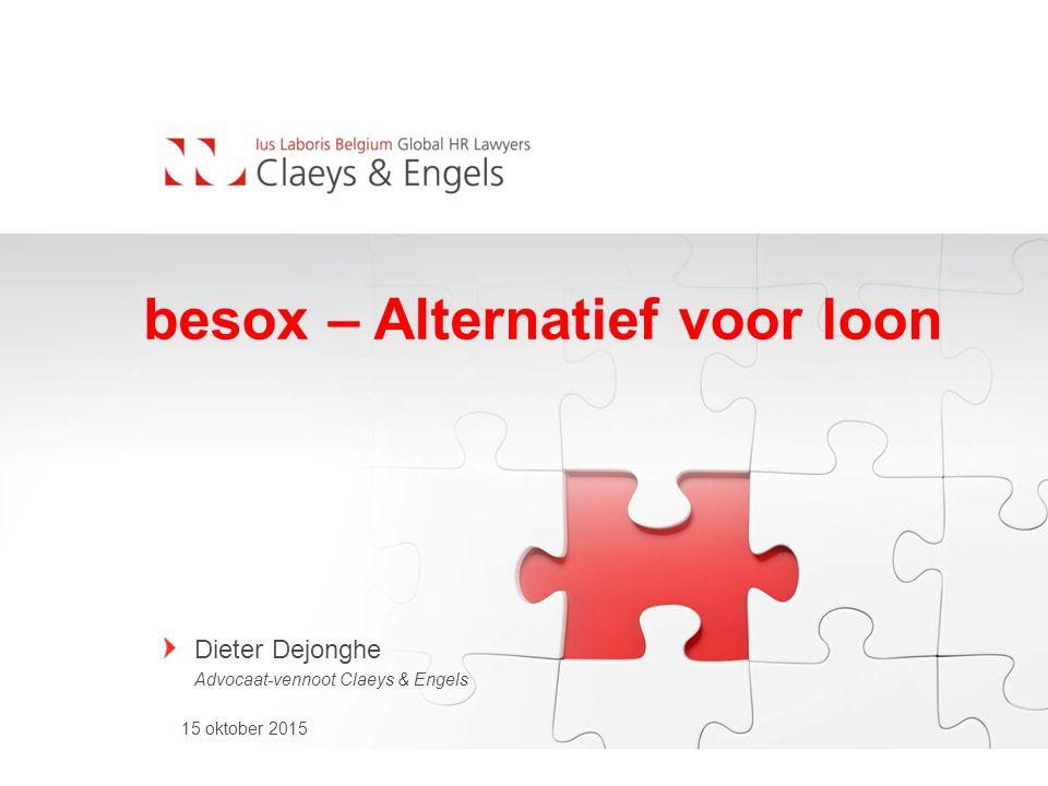 besox – Alternatief voor loon