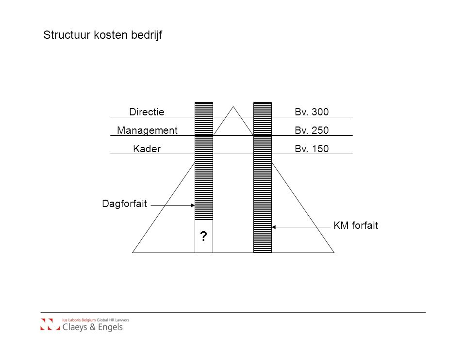 Structuur kosten bedrijf Directie Bv. 300 Management Bv. 250 Kader