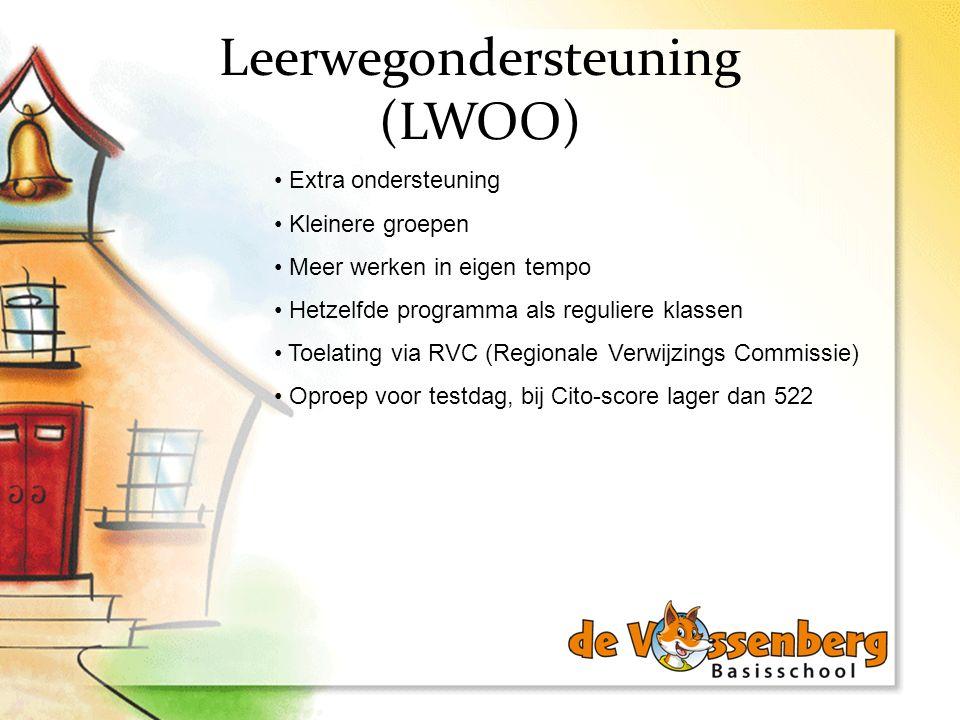 Leerwegondersteuning (LWOO)