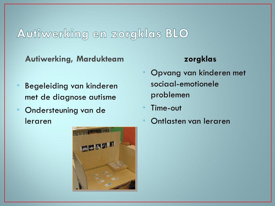 Autiwerking en zorgklas BLO
