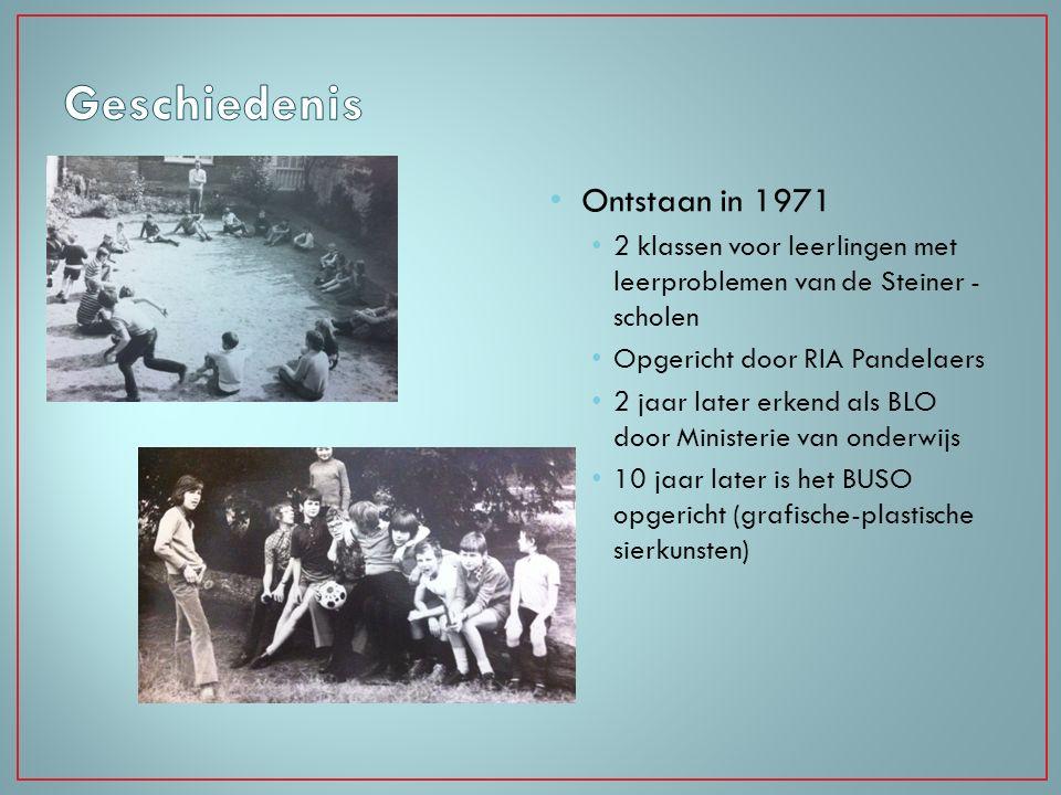 Geschiedenis Ontstaan in 1971