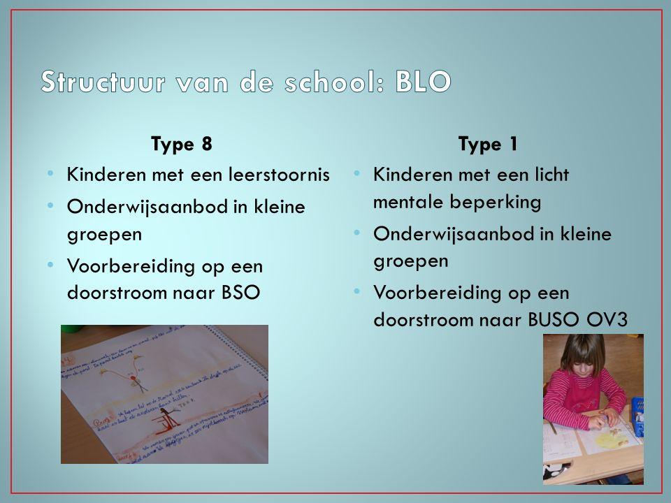 Structuur van de school: BLO