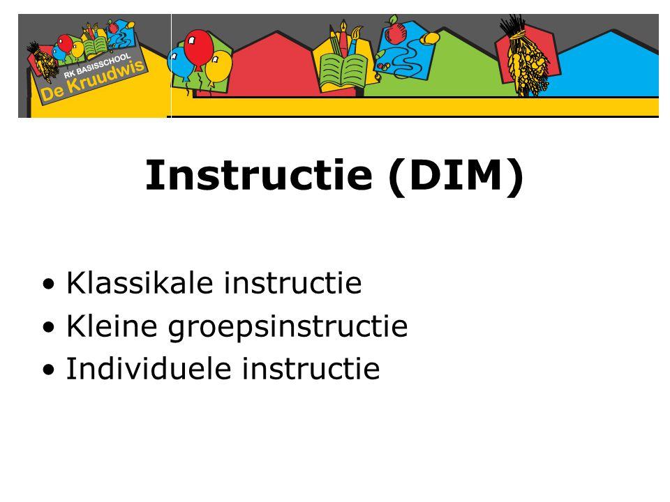 Instructie (DIM) Klassikale instructie Kleine groepsinstructie