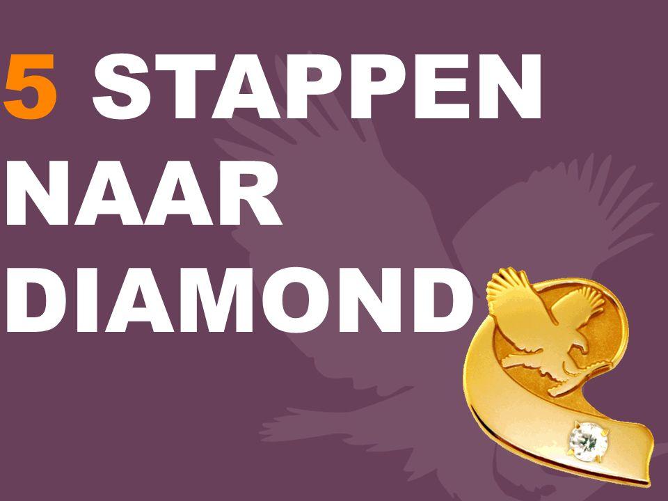 5 STAPPEN NAAR DIAMOND