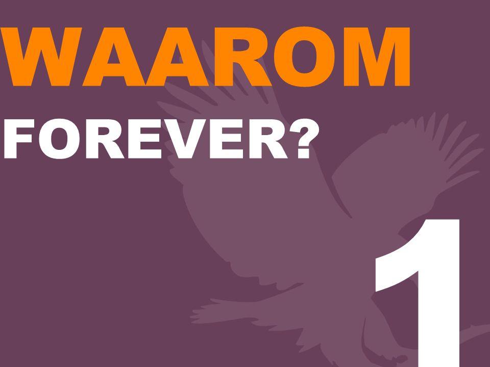 WAAROM FOREVER 1
