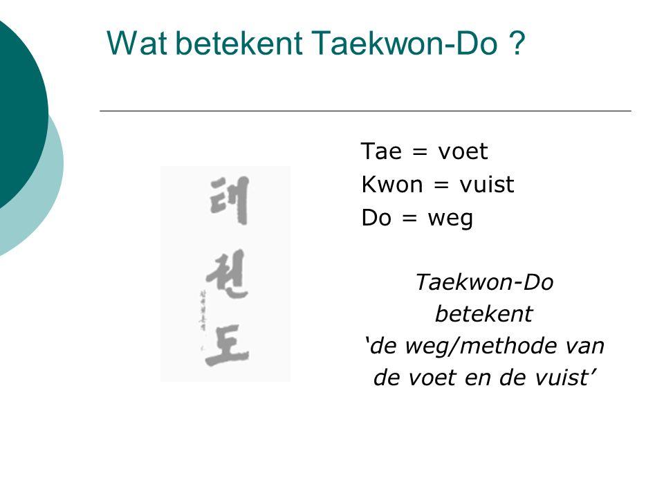 Wat betekent Taekwon-Do