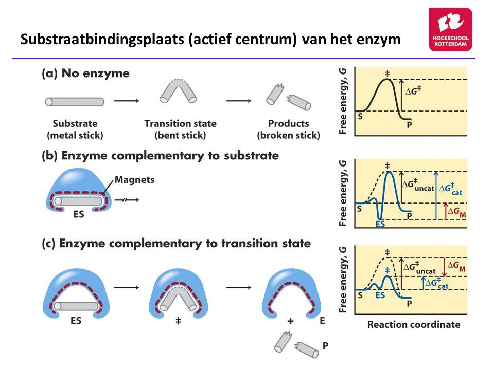 Substraatbindingsplaats (actief centrum) van het enzym