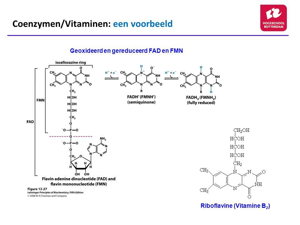 Coenzymen/Vitaminen: een voorbeeld