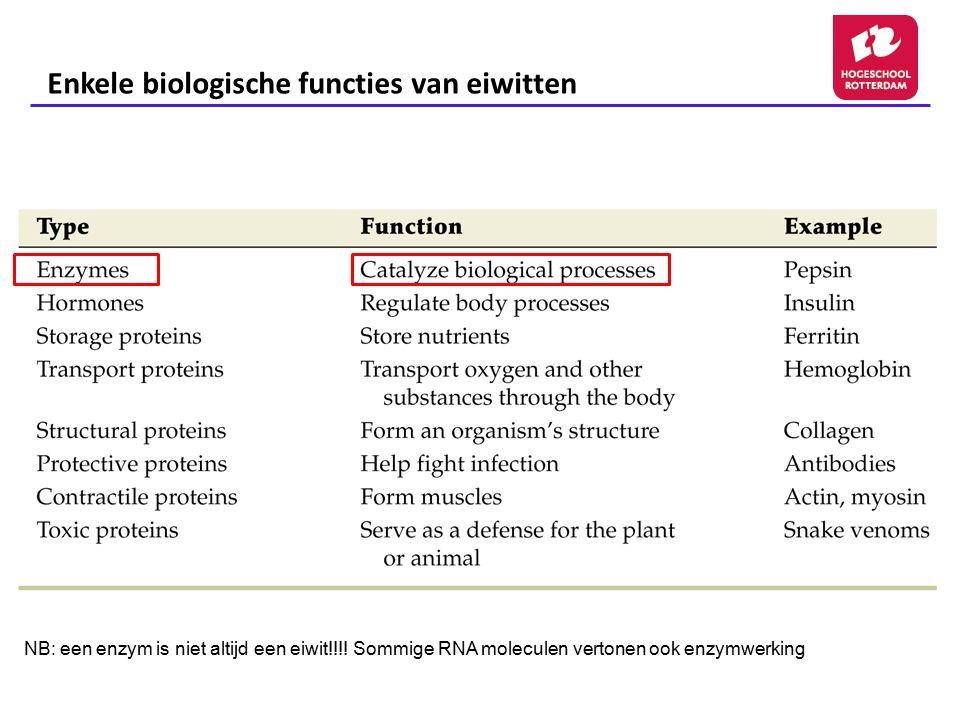Enkele biologische functies van eiwitten