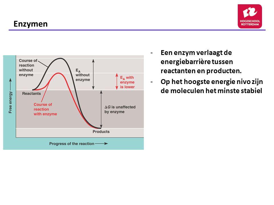 Enzymen Een enzym verlaagt de energiebarrière tussen reactanten en producten.