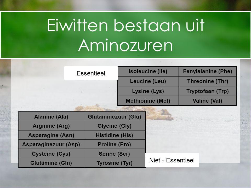 Eiwitten bestaan uit Aminozuren Essentieel Niet - Essentieel